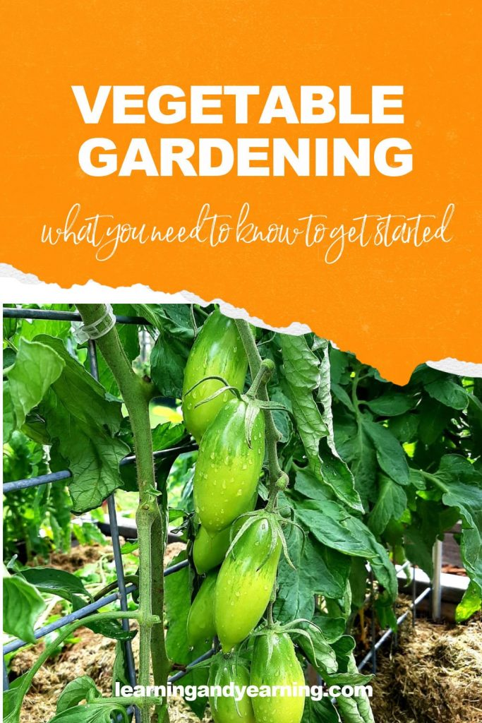 What you need to know to start a vegetable garden!