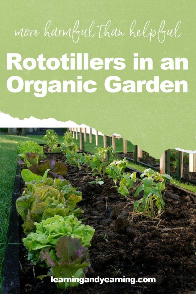 Rototillers: More harmful than helpful in an organic garden!