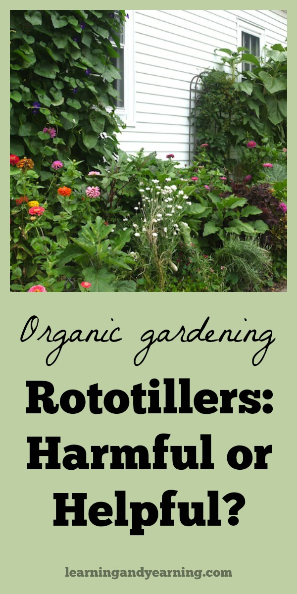 Since building soil is the most important thing you can do to maintain a healthy, disease free organic garden, you may want to reconsider using a rototiller. That's because, in the end, rototillers destroy soil, and the life it contains.  #organicgardening #rototiller