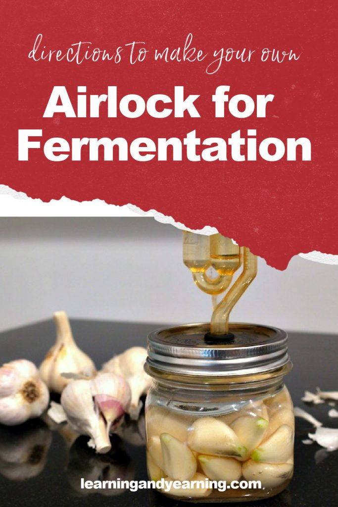 Make your own airlock for fermentation!