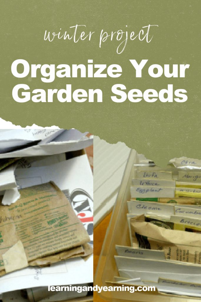 Winter project: organizing seeds!