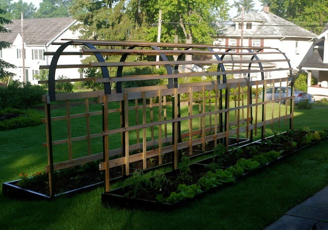 Building a trellis for tomato plants will provide the support your plants need for vigorous growth and healthy air circulation.