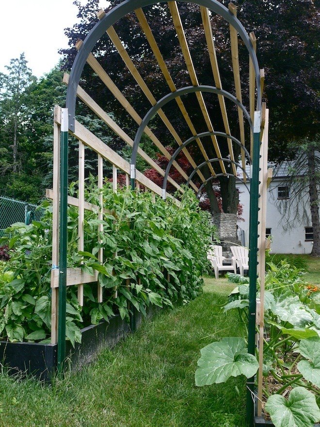 How to build a garden trellis @learningandyearning