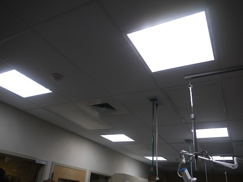 These are not lights in the ceiling, but sun tubes which provide the benefits of sky lights without the drawbacks such as overheating in the summer, and heat loss in the winter.