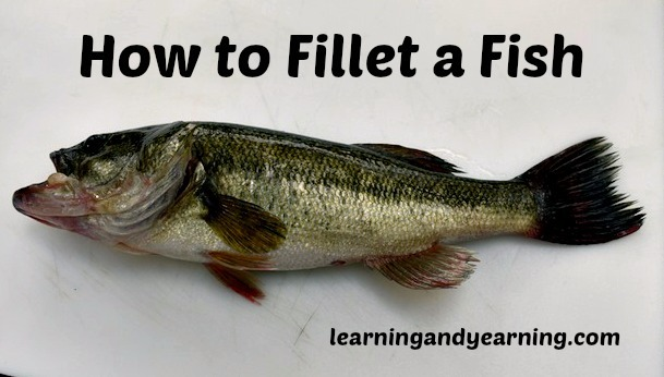Do you know how to fillet a fish? If not, you'll find this tutorial super helpful! @learningandyearning.com