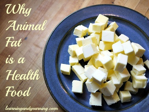 Why Animal Fat is a Health Food @learningandyearning