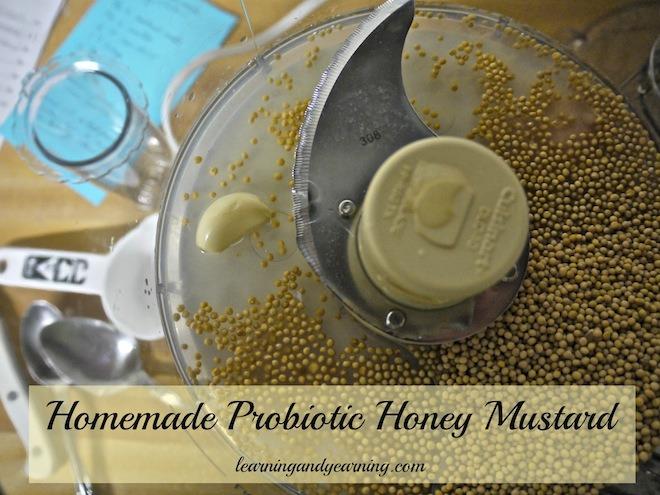 Homemade Probiotic Honey Mustard