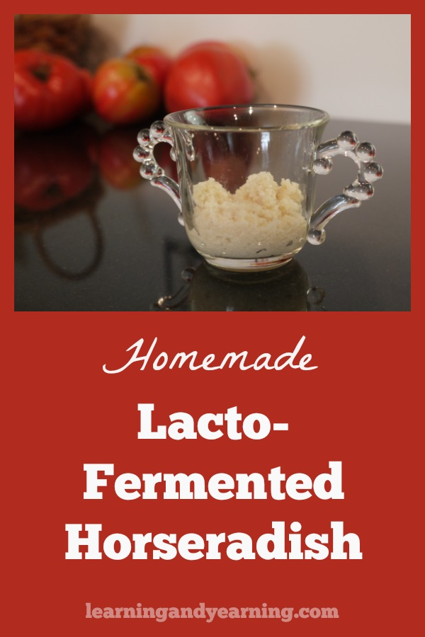 Lacto-Fermented Horseradish is a delicious condiment that just happens to be full of beneficial probiotics. Make it from homegrown horseradish, or pick some up at a farmer's market.