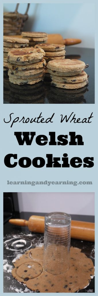 Making sprouted wheat Welsh Cookies is a great way to add digestible nutrients to your treat - without sacrificing taste!