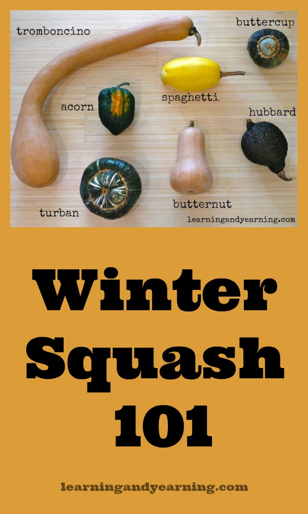 Learn to plant, harvest, cure and store winter squash. It can be used in so many ways from soup, to entree, to dessert!