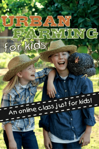 Urban Farming for Kids!