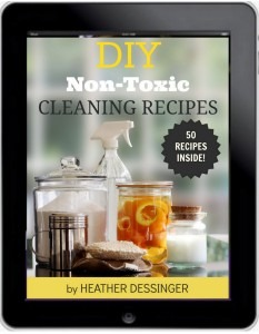 Cleaning-Book1-233x300-1
