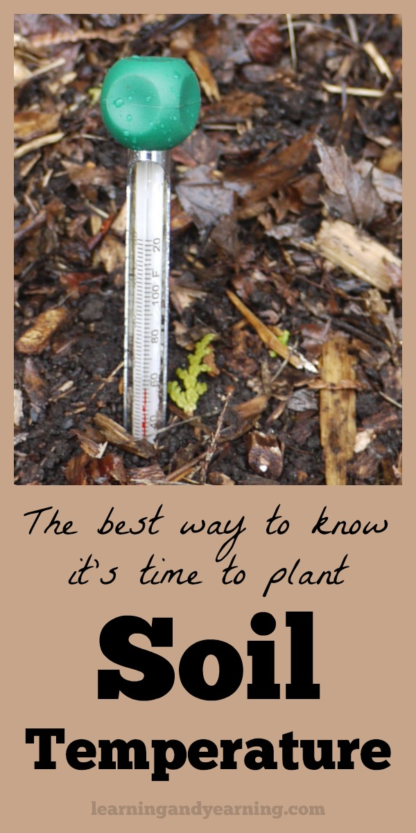 Learn how to measure soil temperature and the optimum soil temperature range for planting common seeds.