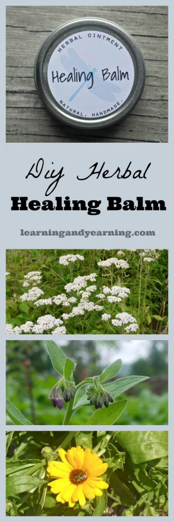 Make your own herbal healing balm from plants you've grown or foraged yourself!