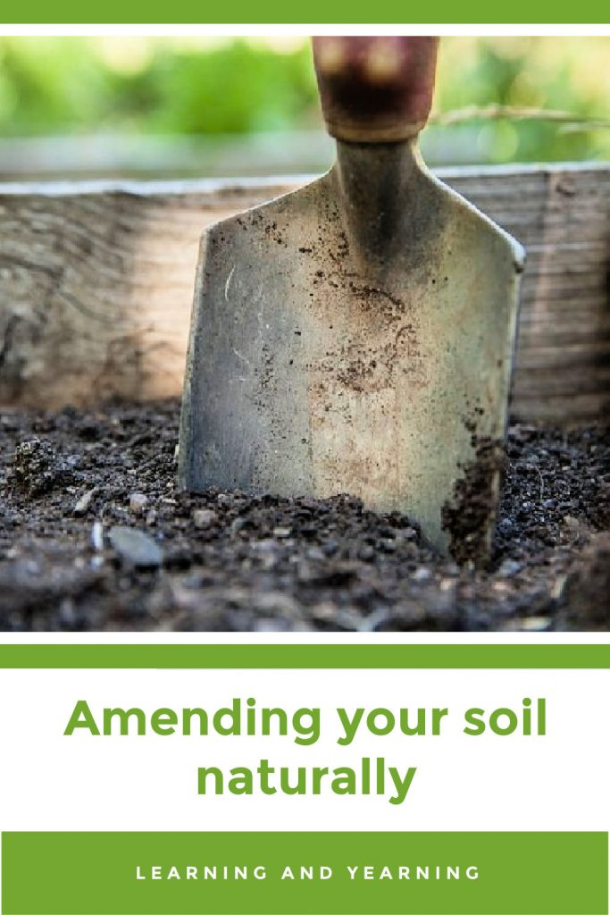Learn to amend your garden soil naturally!