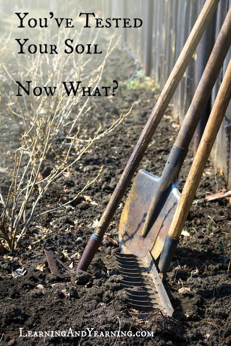 You've tested your soil; now what?