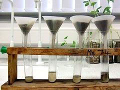 testing soil ph