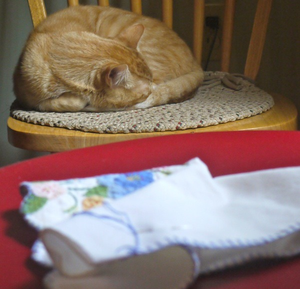 Make Your Own Herb Pillow to Help You Sleep @learningandyearning.com