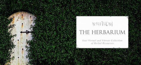 Introducing The Herbarium