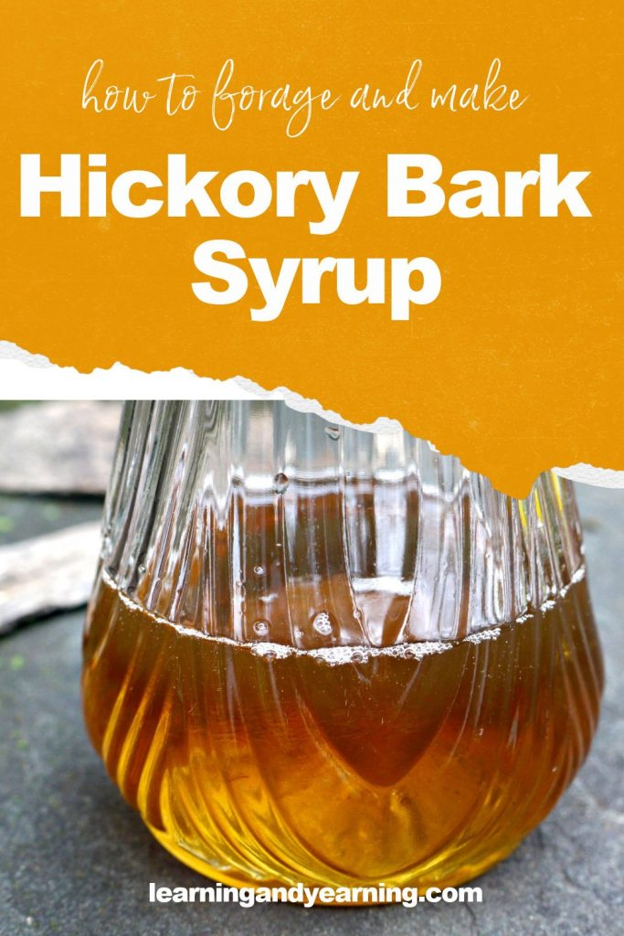 Learn to forage and make hickory bark syrup!
