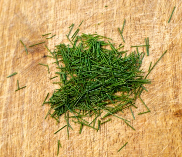 Pine needle salad dressing is a great way to add flavor and nutrients to your salad. And most likely you won't have to go far to forage the pine needles.