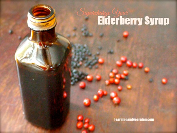 Supercharge Your Elderberry Syrup with foraged plants to boost immune building properties.