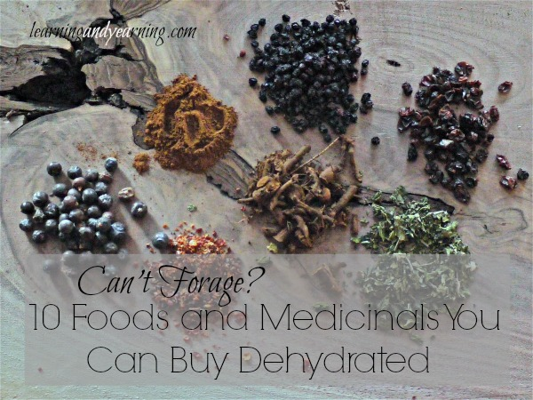 Can't forage? Here are 10 foods and medicinals that you can buy dehydrated!