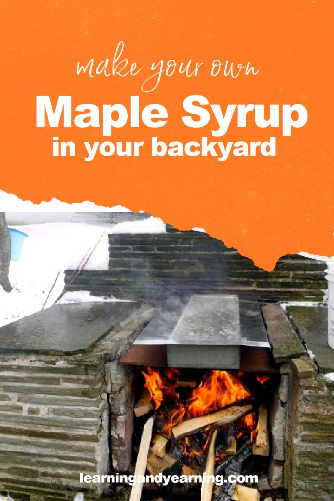 Backyard maple sugaring!