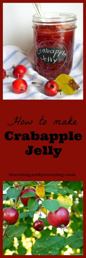 Crabapple jelly is one of the easiest to make; no pectin is required because the crabapples themselves have plenty of their own!
