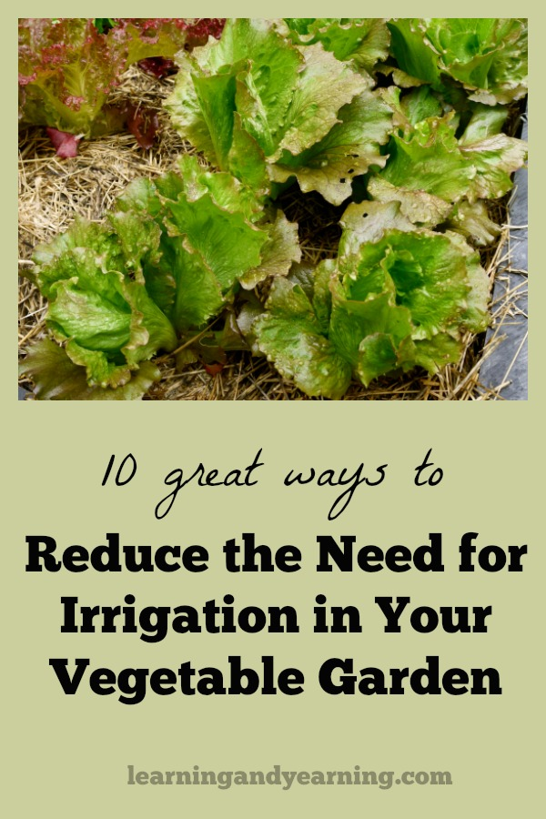 Here are 10 ways that you can begin to use right now to reduce the need for irrigation in your garden. Organic gardening and natural living at its best!