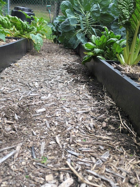 Using Wood Chip Mulch in a Vegetable Garden