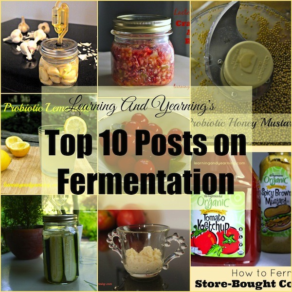LearningAndYearning's top 10 posts on lacto-fermentation will get you started on your fermentation journey. You'll even learn how to make your own airlock!