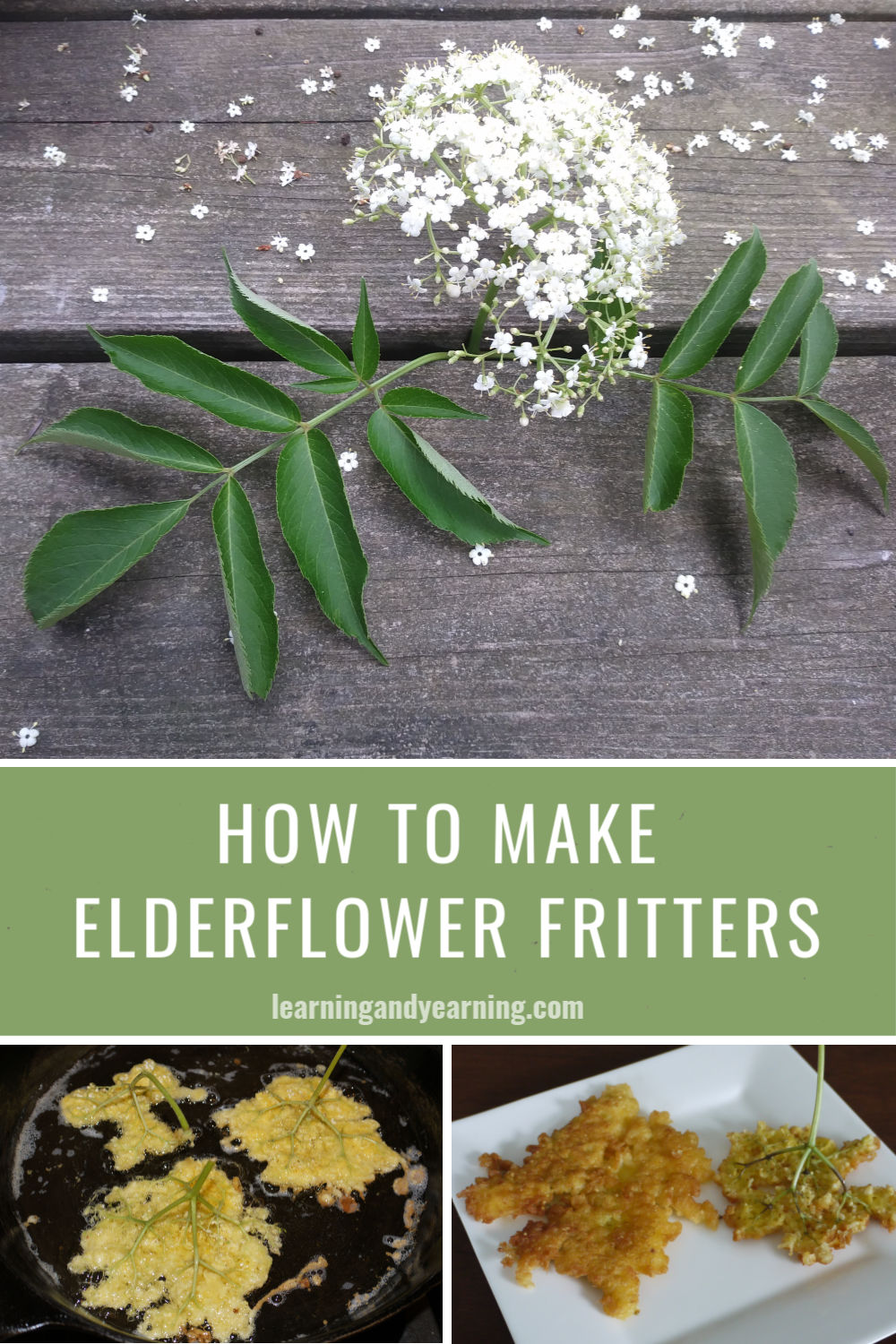 How to make homemade elderflower fritters!