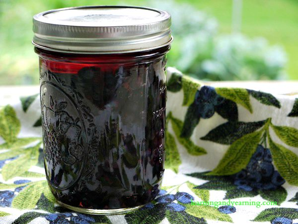 lacto fermented blueberries