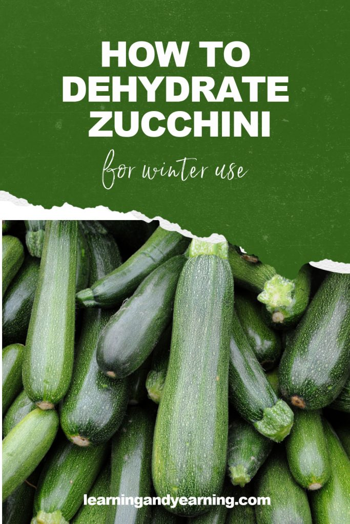 How to dehydrate zucchini for winter use!