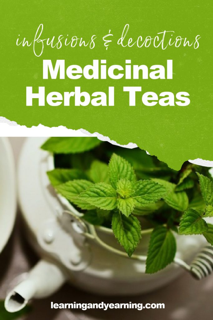 Medicinal herbal teas: infusions and decoctions!