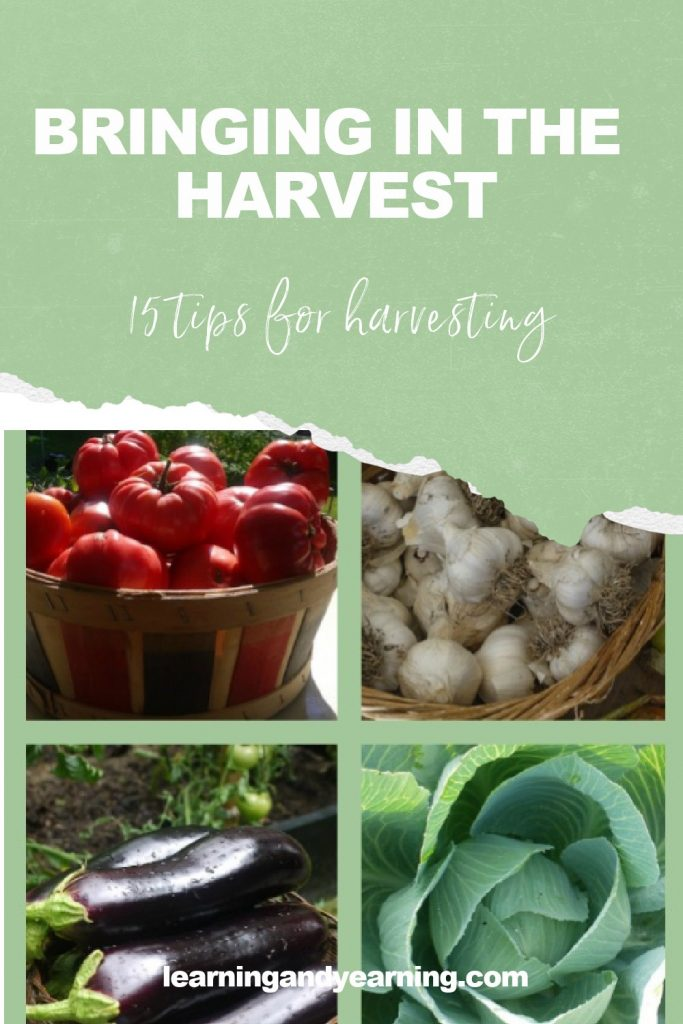 15 tips for bringing in the harvest!