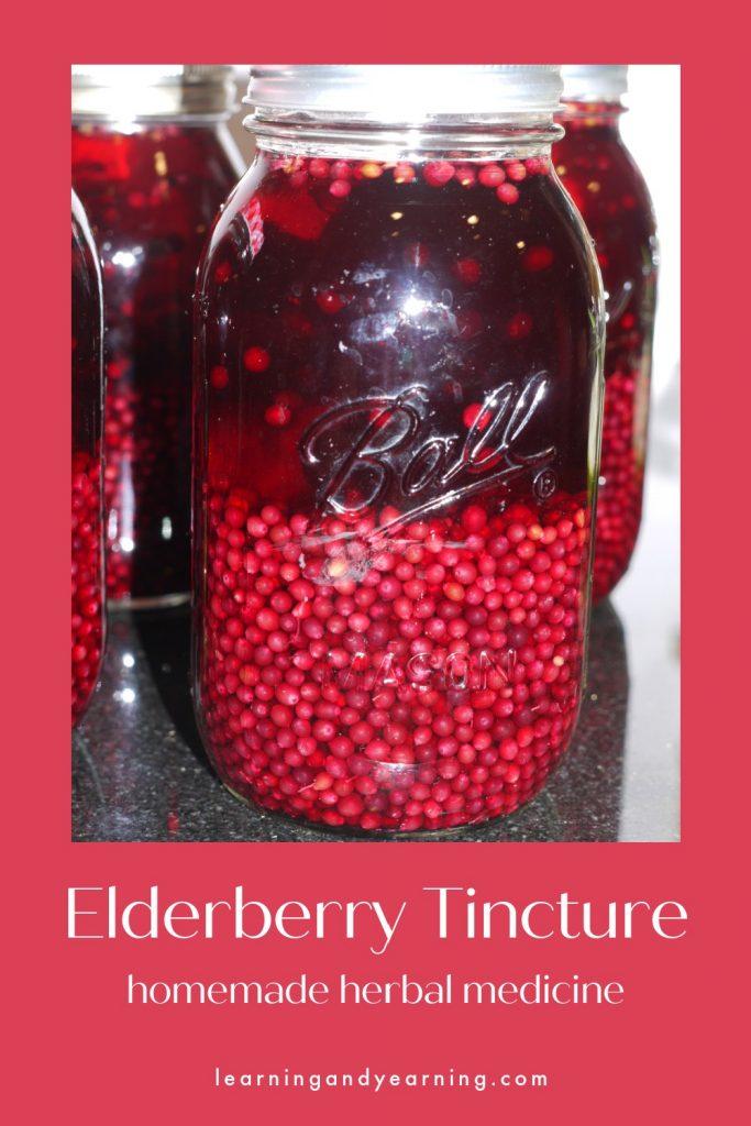 Homemade elderberry tincture!