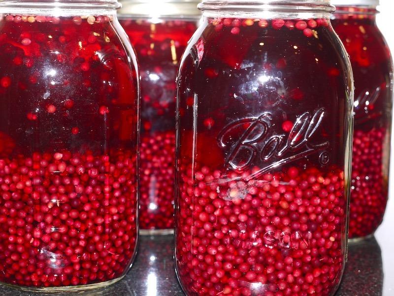 elderberry tincture, elderberry liqueuer