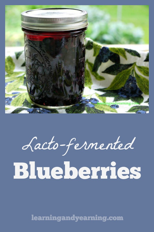 Fermenting fruit is a little more challenging than vegetables. Using whey and a short fermentation period are the key to lacto-fermented blueberries.