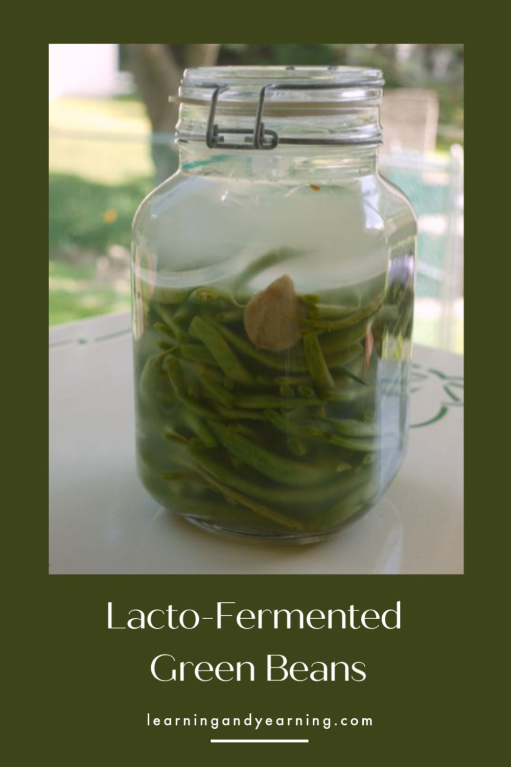 Homemade lacto-fermented green beans!