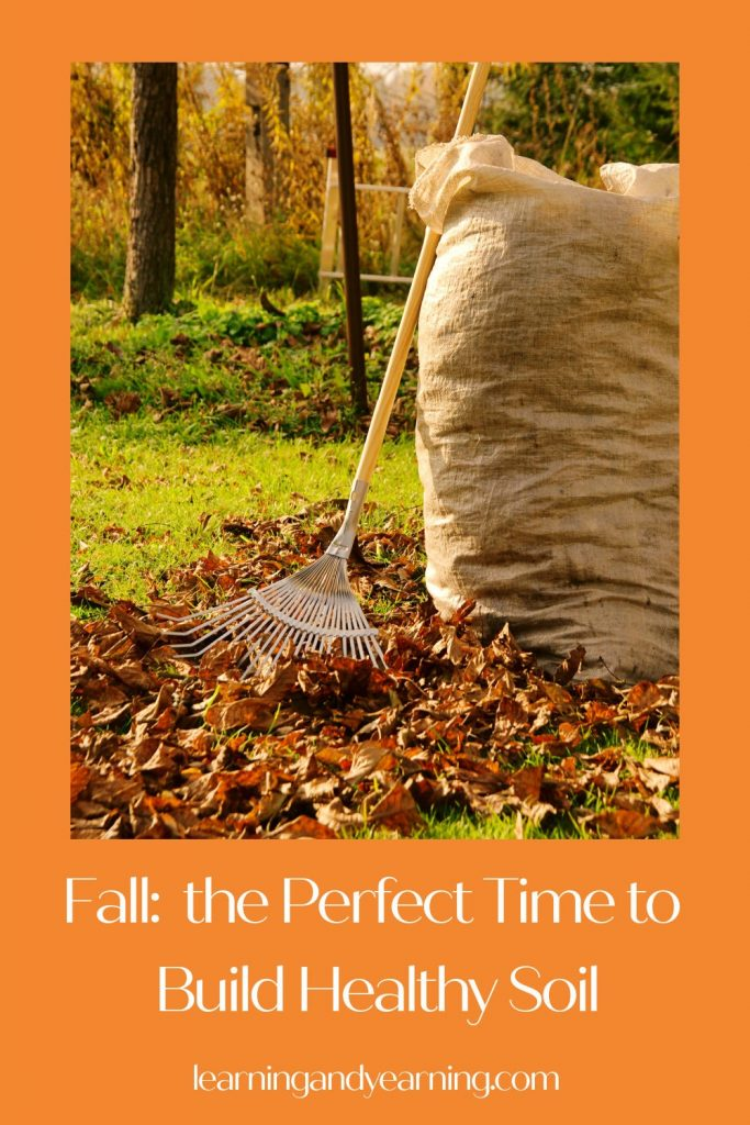 Fall: the perfect time to build healthy garden soil!