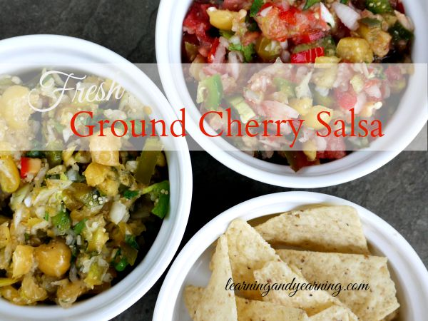 The next time you're planning to make fresh salsa try something a little different like ground cherry salsa. Sweet and a little hot all at the same time.