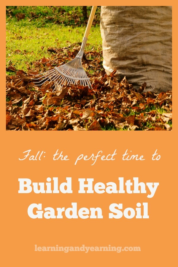 hat you do in the fall to build healthy soil and put your garden to bed for the winter can make or break next year's garden. #organicgardening #fall