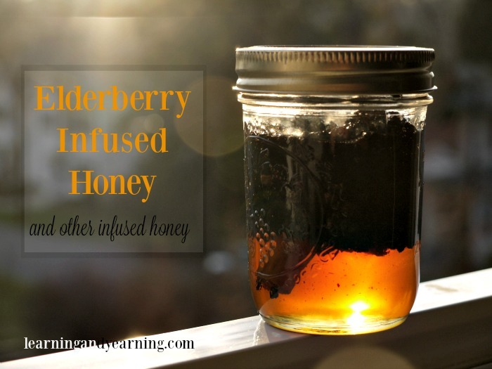 Make elderberry, or other herbal infused honey for a delicious home remedy for colds, flu, or even to help you sleep.