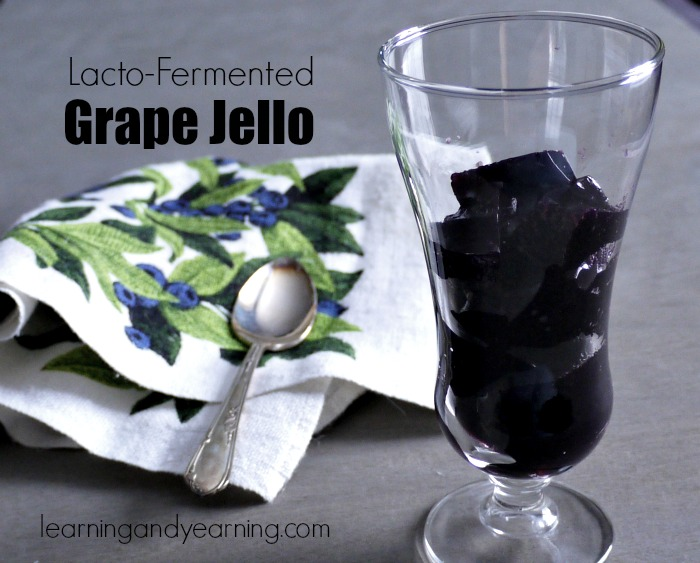 Keeping our guts healthy is extremely important, and fermentation is an easy and delicious way to support gut health. Eating foods that are rich in beneficial bacteria, like fermented grape jello, is one way to ensure that your family is getting the probiotics they need.