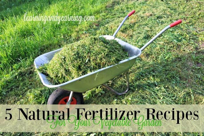 5 Natural Fertilizer Recipes For Your Vegetable Garden