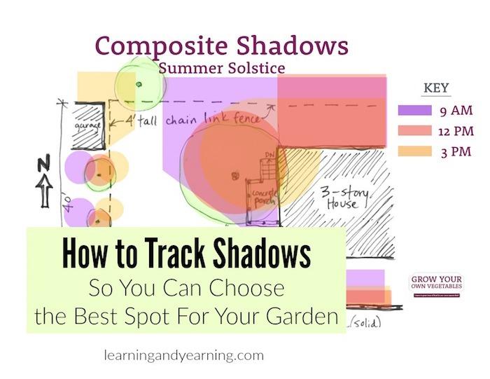 Choose the best spot for your garden