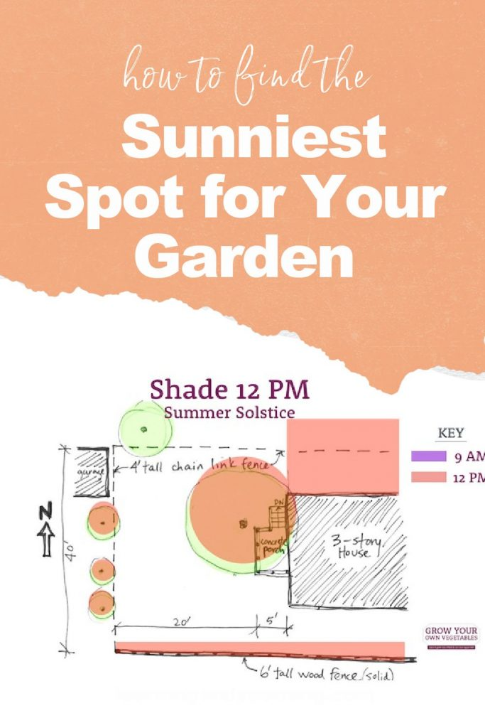 How to find the sunniest spot for your garden!