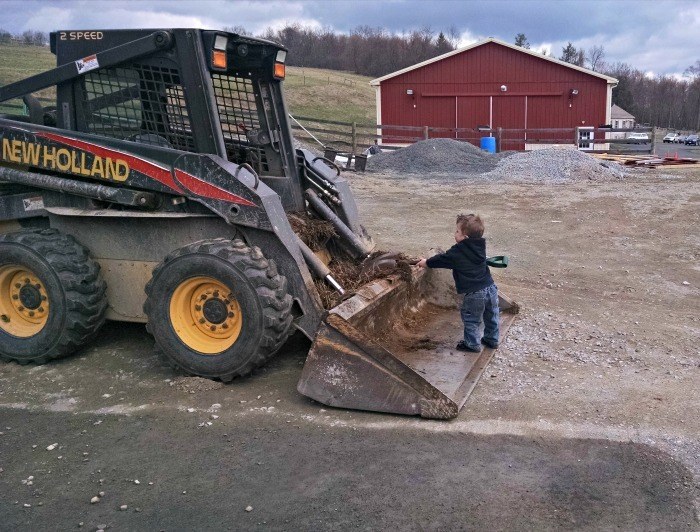Learn the ins and outs of using manure in your garden, and important questions to ask your farmer to be sure your manure is safe.